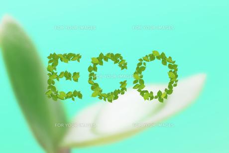 エコロジーイメージ FYI00045748