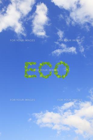 エコロジーイメージ FYI00045761