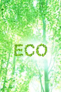 エコロジーイメージ FYI00045767