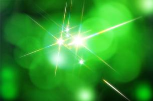 新緑と煌めき FYI00045813
