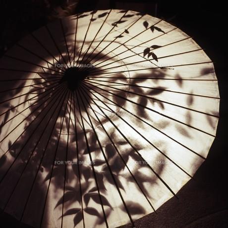 和傘と灯りのオブジェ FYI00045902