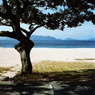 海水浴場の木陰 FYI00045931