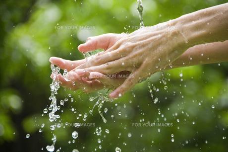 手を洗う FYI00047394