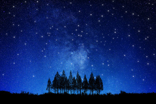 星空と木 FYI00049638