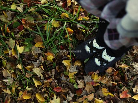 落ち葉と女の子の足元 FYI00050493