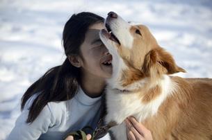 犬と遊ぶ少女 FYI00052394