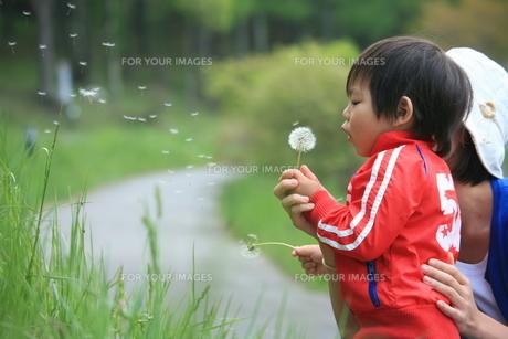 子供 FYI00054164