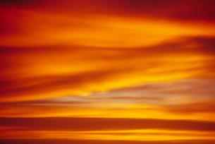 sunset magic FYI00055979