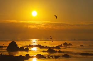 能登島の朝 FYI00056153