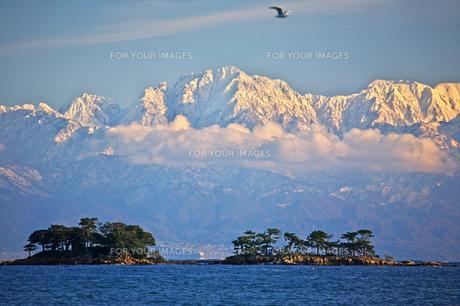 海の上の立山連峰 FYI00056165