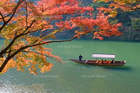 嵐山の観光遊覧船 FYI00057223
