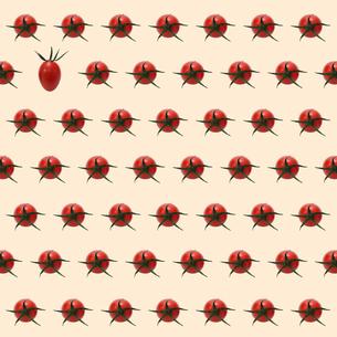 プチトマトの背景素材 FYI00061277