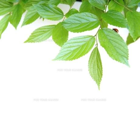 環境イメージ FYI00062275