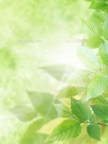 環境イメージ FYI00062363