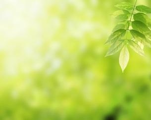 環境イメージ FYI00062364