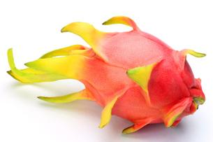 ドラゴンフルーツ FYI00071010