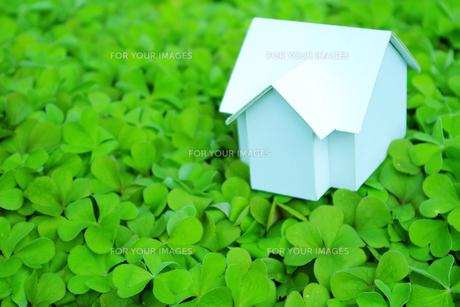 クローバーの上にある家の模型 FYI00073207