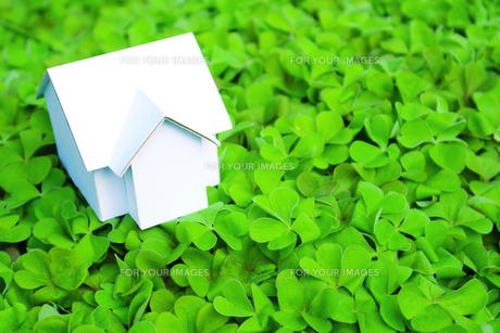 クローバーの上にある家の模型 FYI00073210
