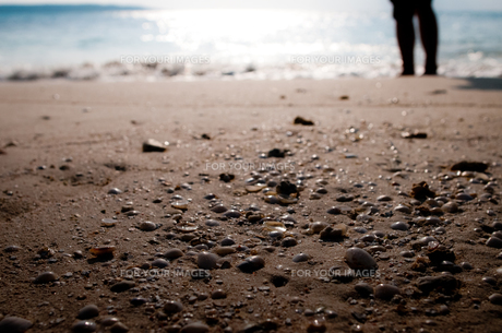海辺のバケーション FYI00073357