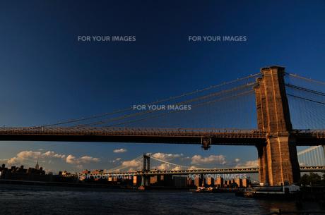 ブルックリンブリッジとマンハッタンブリッジ FYI00073432