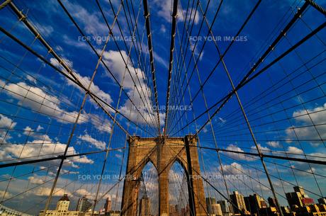 ブルックリンブリッジ FYI00073436