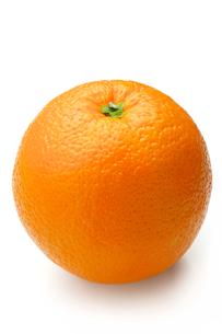 オレンジ FYI00079936