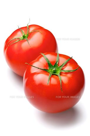 トマト FYI00079956