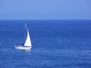 大海原を疾走するヨット FYI00081643