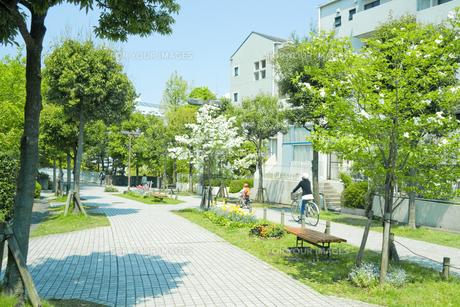 家並みと新緑 FYI00082025
