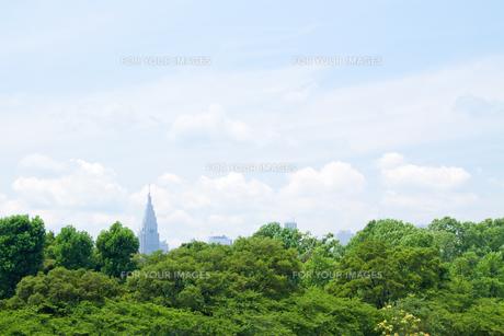 四谷から新宿方面を見る FYI00082164