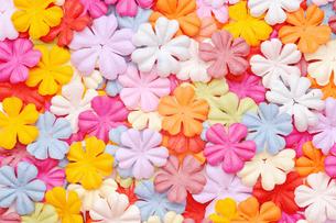 花びら FYI00082506