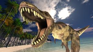 ティラノザウルス FYI00086719