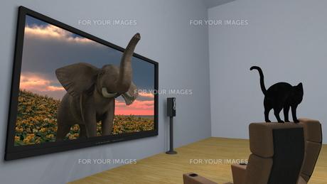 3Dテレビ FYI00086735