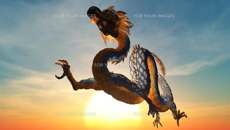 ドラゴン FYI00087272