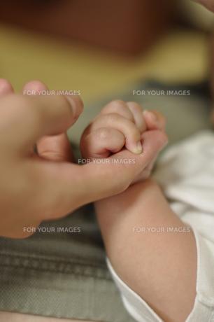 赤ちゃんと握手 FYI00089377
