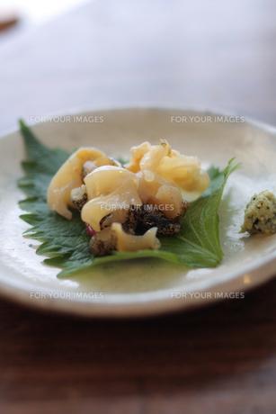 つぶ貝の刺身 FYI00092408