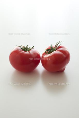 トマト FYI00092679