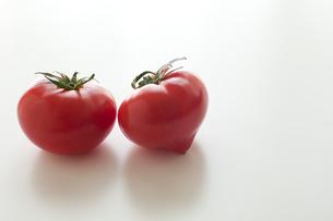 トマト FYI00092699
