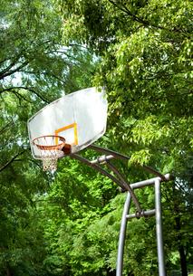 公園のバスケットボールゴール FYI00092963
