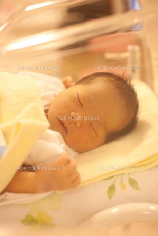 眠る赤ちゃん FYI00093221