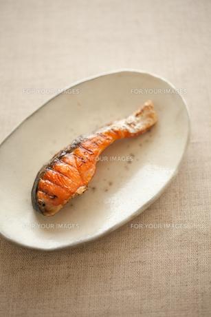 塩鮭 FYI00093341