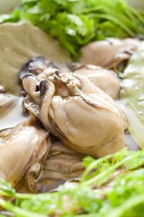 牡蠣のオリーブオイル漬け FYI00093677