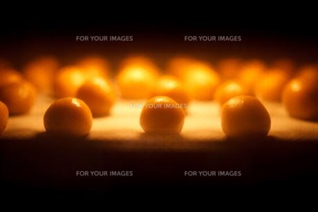 クッキーを焼く FYI00093716