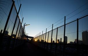 陸橋から見た日の出 FYI00098241