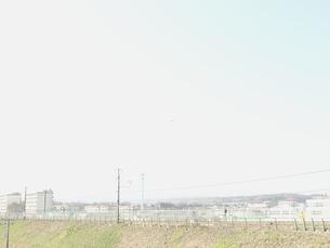 小春日和 FYI00100584