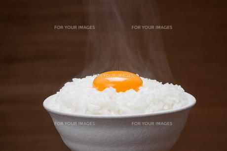 温か卵かけご飯 FYI00105372