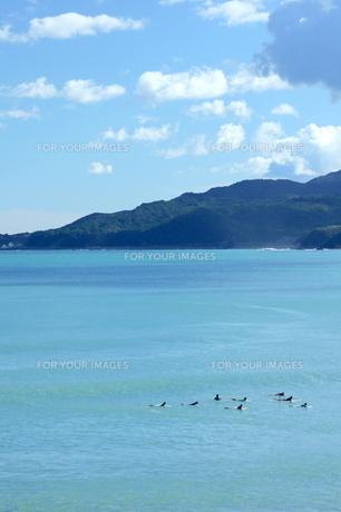海とサーファー FYI00105701