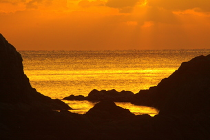 朝焼けの海 FYI00105744