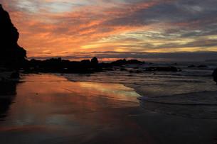砂に映る朝焼け FYI00105751