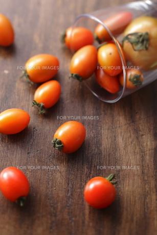 自家栽培のミニトマト FYI00111359